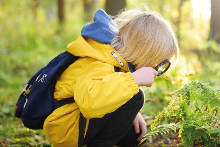 Komentovaná vycházka pro děti za přírodou Brd