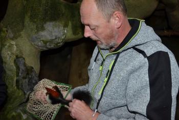Zoo zjišťovala pohlaví letošních mláďat veverek Prévostových